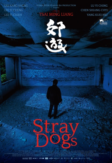 stray-dogs